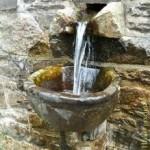 Wasser, Naturschutz, Umweltpolitik