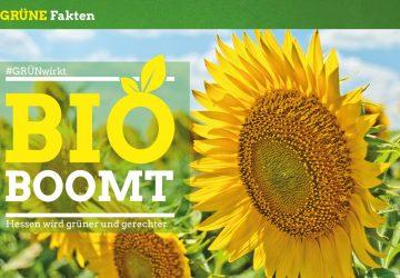 Grüner Fakt: Bio boomt