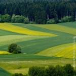 Landwirtschaft, Ländlicher Raum, Acker