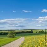 Ländlicher Raum, Natur, Landwirtschaft, Umweltpolitik, Energien, Erneuerbare Energien