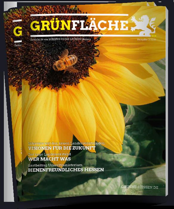 Grünfläche 2/2019 Cover