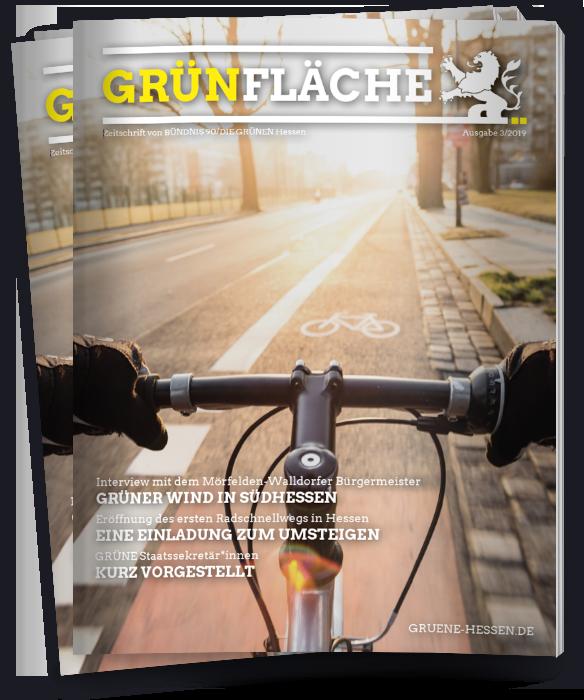 GRÜNFläche Cover 3/2019