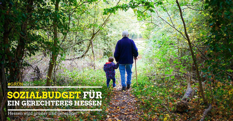 Sozialbudget, Gratisography, C00, GrünWirkt