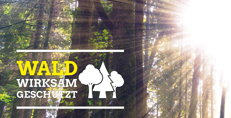 Wald wirksam geschützt