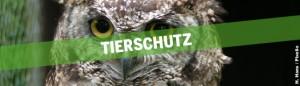 Header Tierschutz