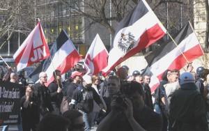 Neonazi2, Innenpolitik