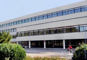 Gymnasium1, Bildungspolitik