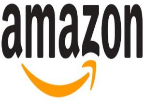 Amazon, Wirtschaft