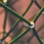 Thema: Datenschutz und Netzpolitik